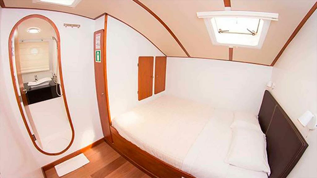 nemo 2 yacht galapagos cruise - double bed ensuite cabin
