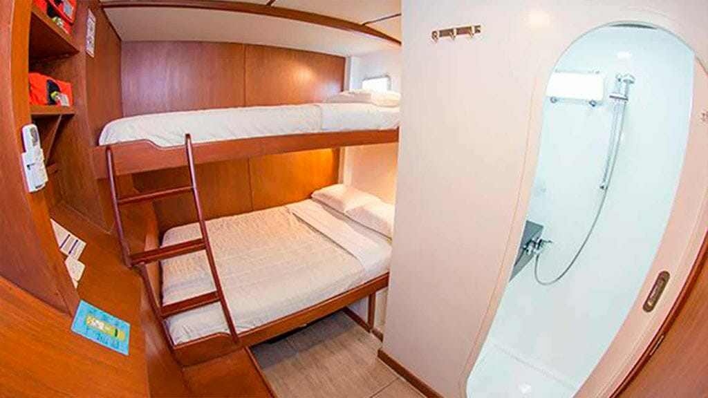 nemo 2 yacht galapagos cruise - twin bunk bed ensuite cabin