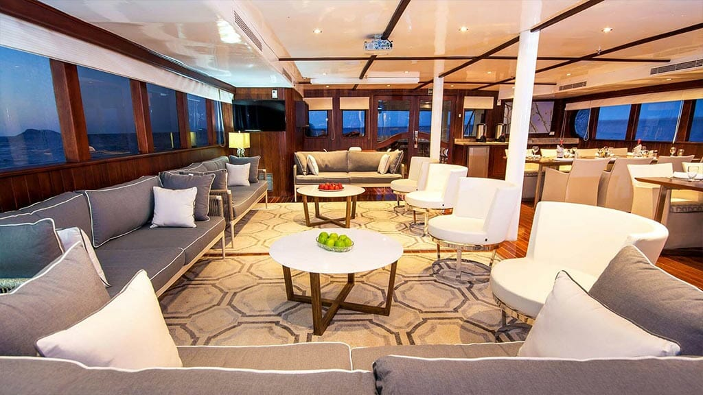 Odyssey Galapagos yacht - indoor social lounge area