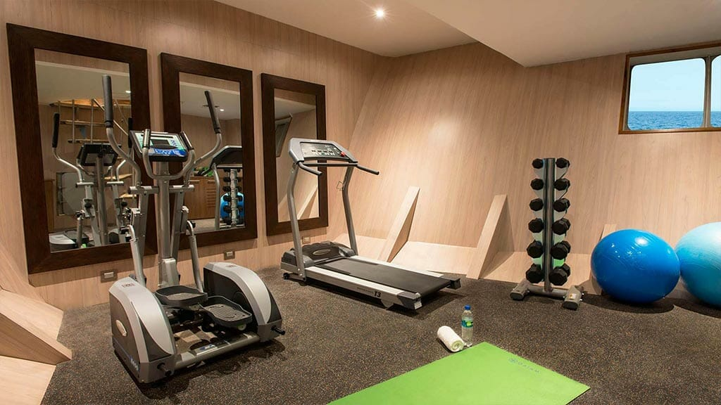 gymnasium with running and step machines and free weights aboard the Origin galapagos yacht