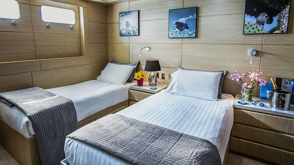 twin guest cabin aboard the passion galapagos yacht
