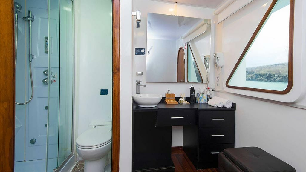 Petrel galapagos yacht - guest bathroom and shower