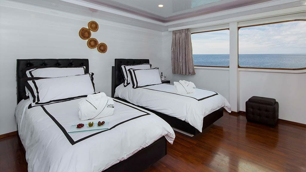 twin guest cabin with large windows aboard the Petrel Galapagos yacht