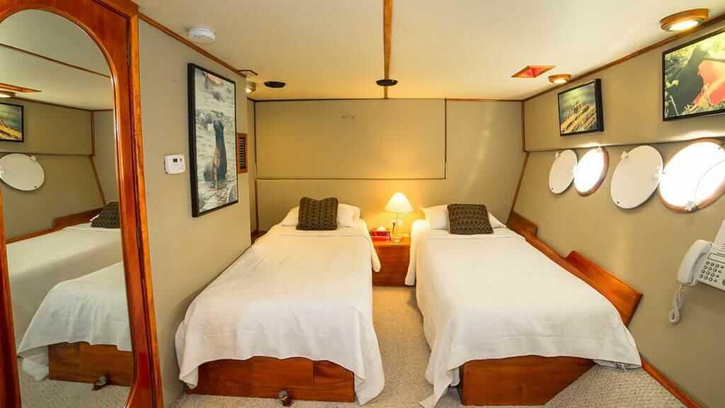 twin cabin aboard the reina silvia galapagos yacht