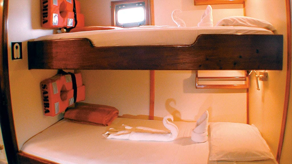 twin bunk bed cabin aboard the Samba yacht with towels shaped like swans
