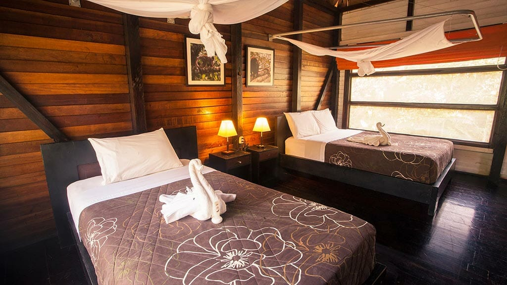 twin bed room cabin with mosquito nets at Sani lodge ecuador amazon rainforest