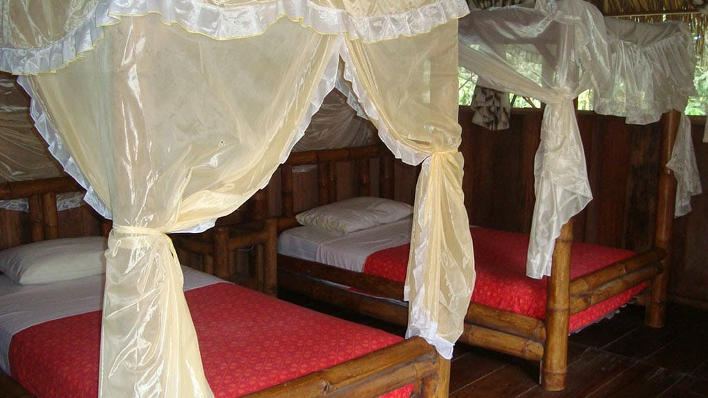 Siona lodge cuyabeno ecuador - twin guest cabin with mosquito net