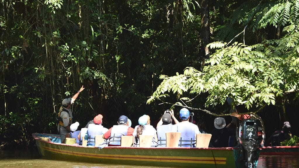 Siona lodge guide points out cuyabeno rainforest wildlife to tourists aboard canoe