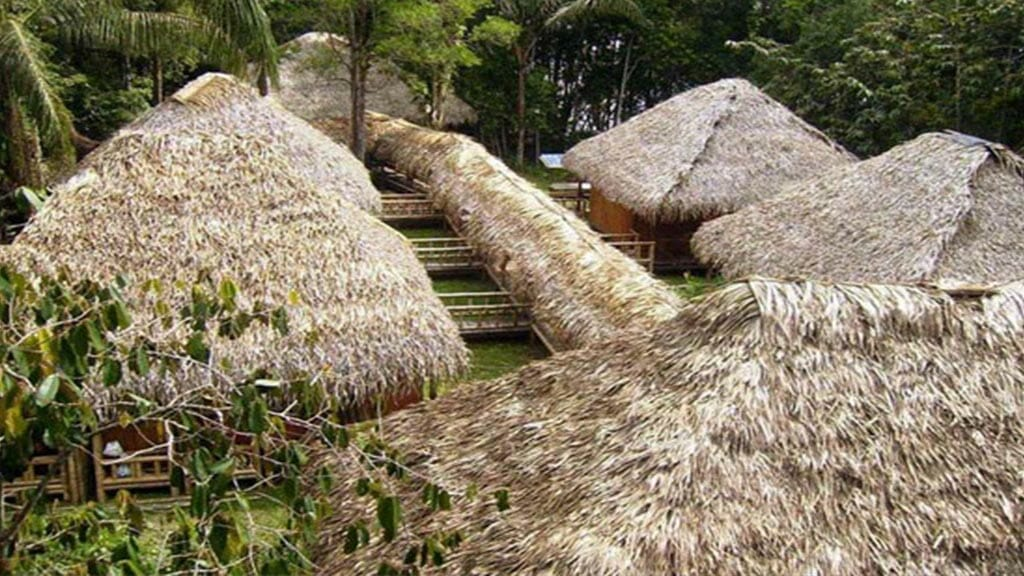 thatched roofs at Siona lodge cuyabeno ecuador