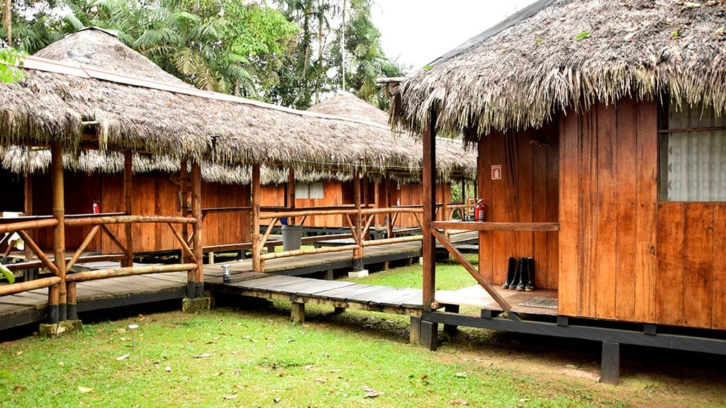 thatched roof cabins and walkway at Siona lodge