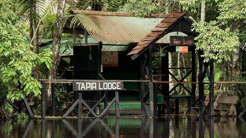 Entrance dock to Tapir Lodge in the cuyabeno reserve ecuador