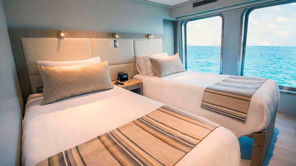 Twin bed cabin with large windows aboard the Theory Galapagos cruise