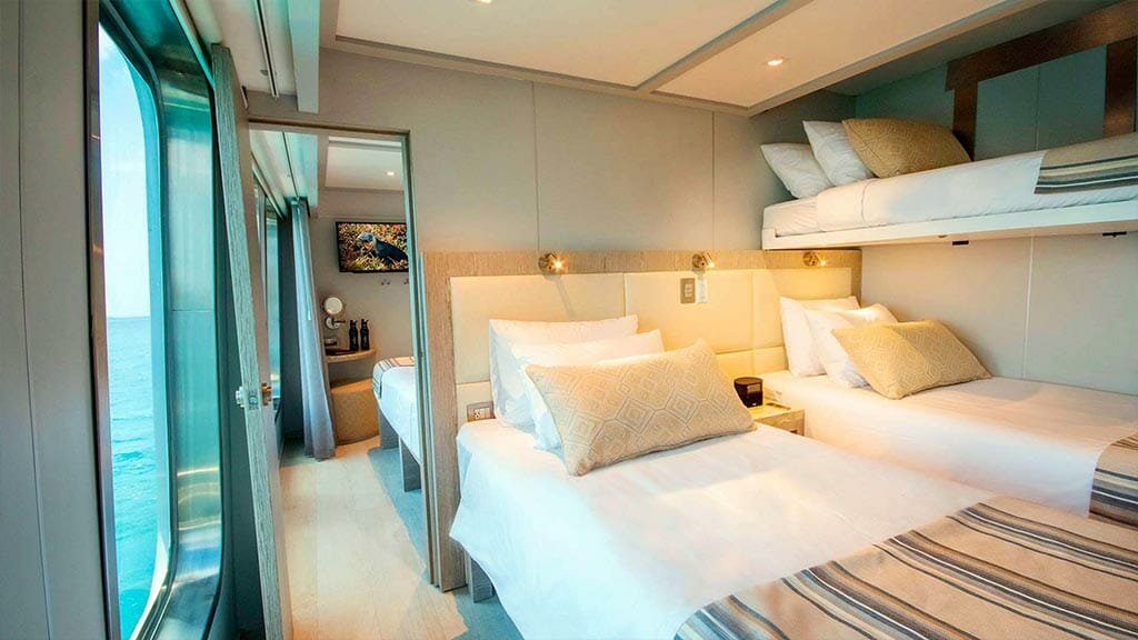 Twin bed cabin with large windows aboard the Theory yacht