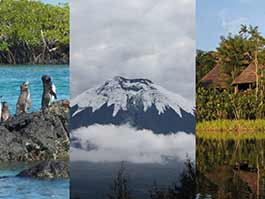 the perfect ecuador vacation - galapagos, highlands and jungle