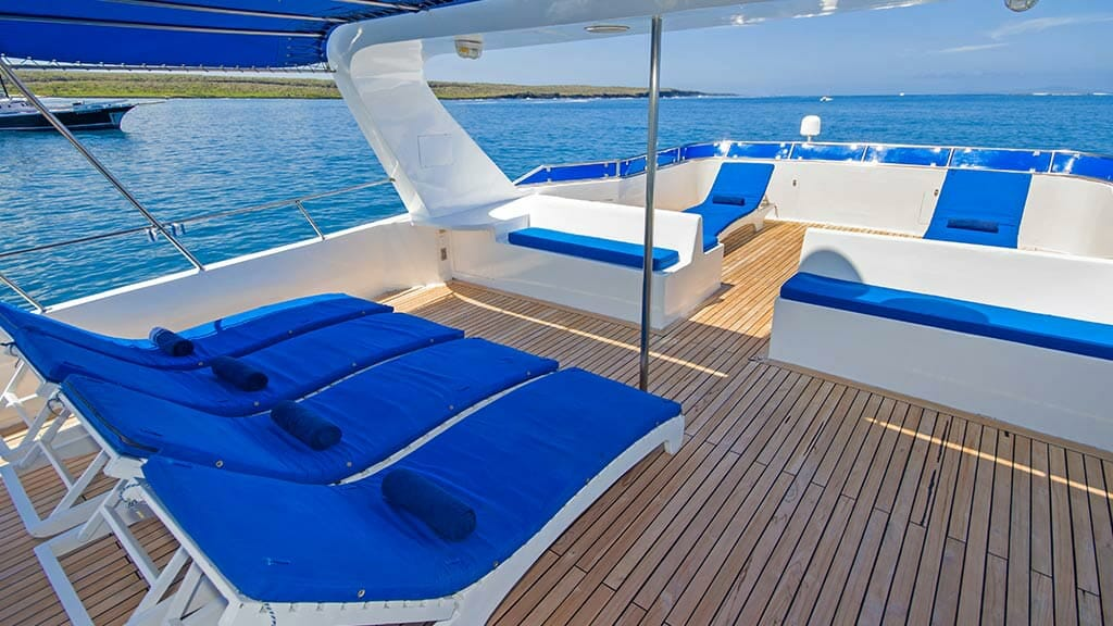 blue sun loungers on TipTop 4 galapagos yacht sun deck with ocean views