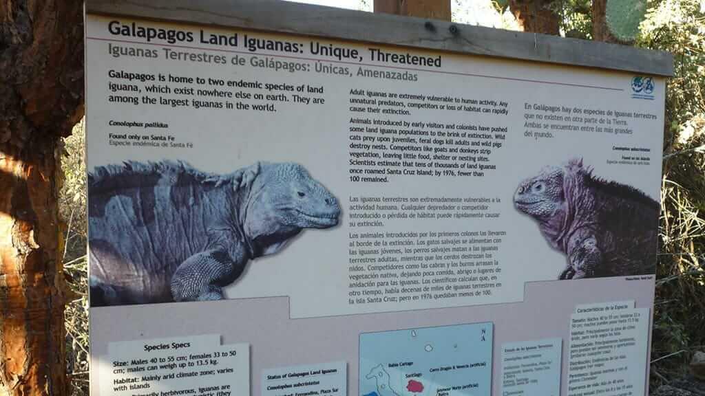 educative information at the charles darwin research station galapagos
