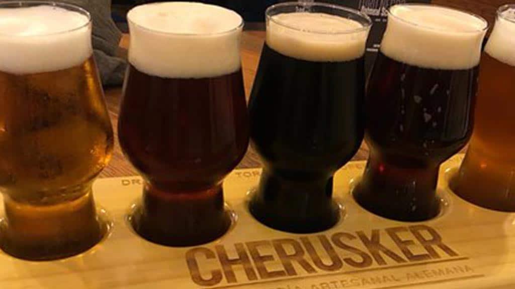 cherusker beer in ecuador