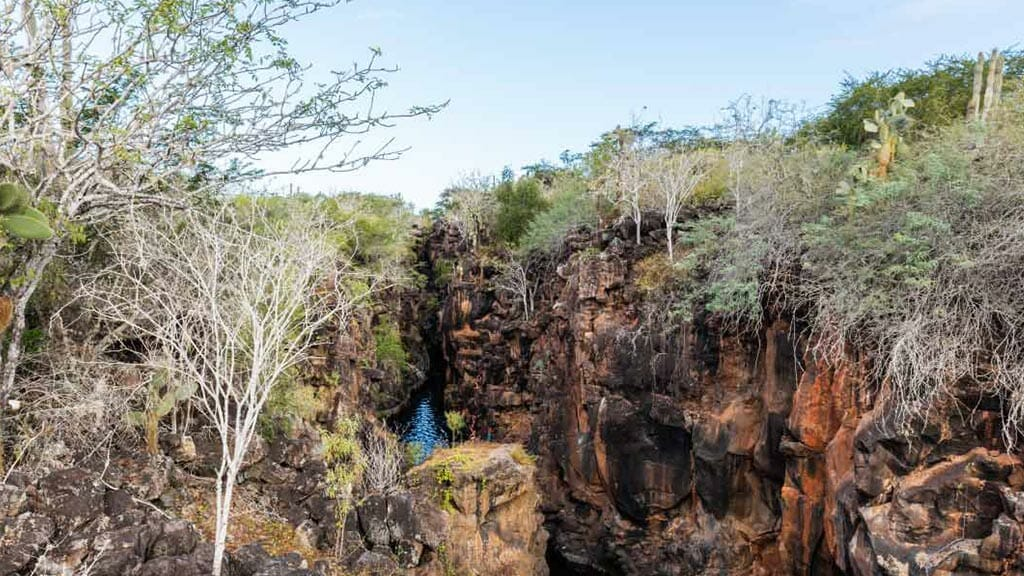 view from above of las grietas galapagos - a swimming hole hidden between two lava walls