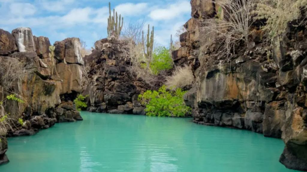 turquoise waters of las grietas swimming hole at santa cruz galapagos