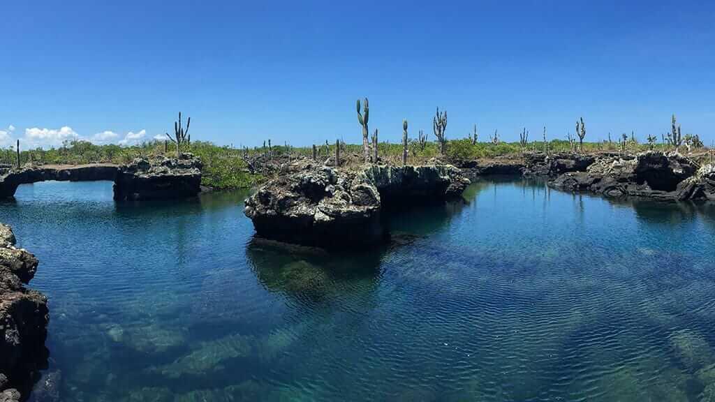 los tuneles lava landscape isabela galapagos