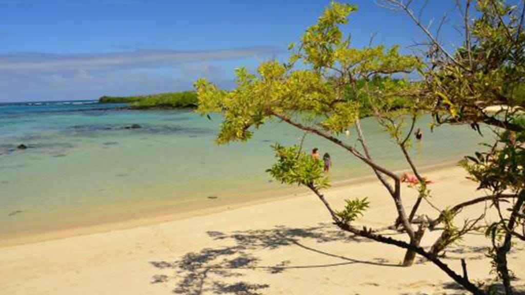 playa-de-los-alemanes-galapagos