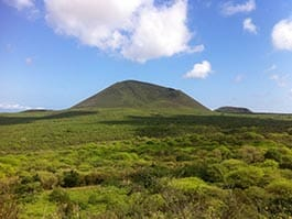 green hills and landscape of floreana island galapagos