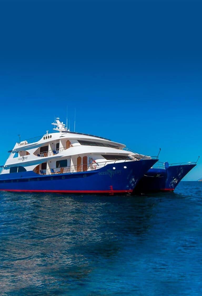 Ocean Spray Catamaran