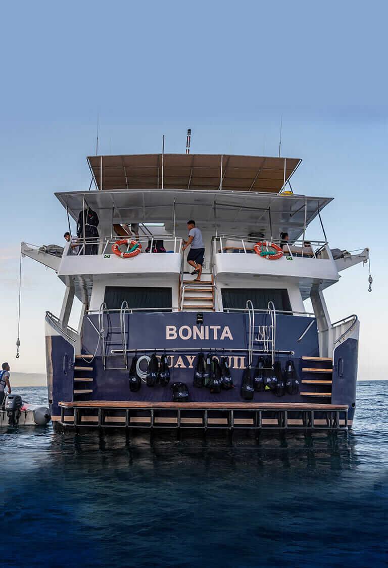 Bonita Yacht