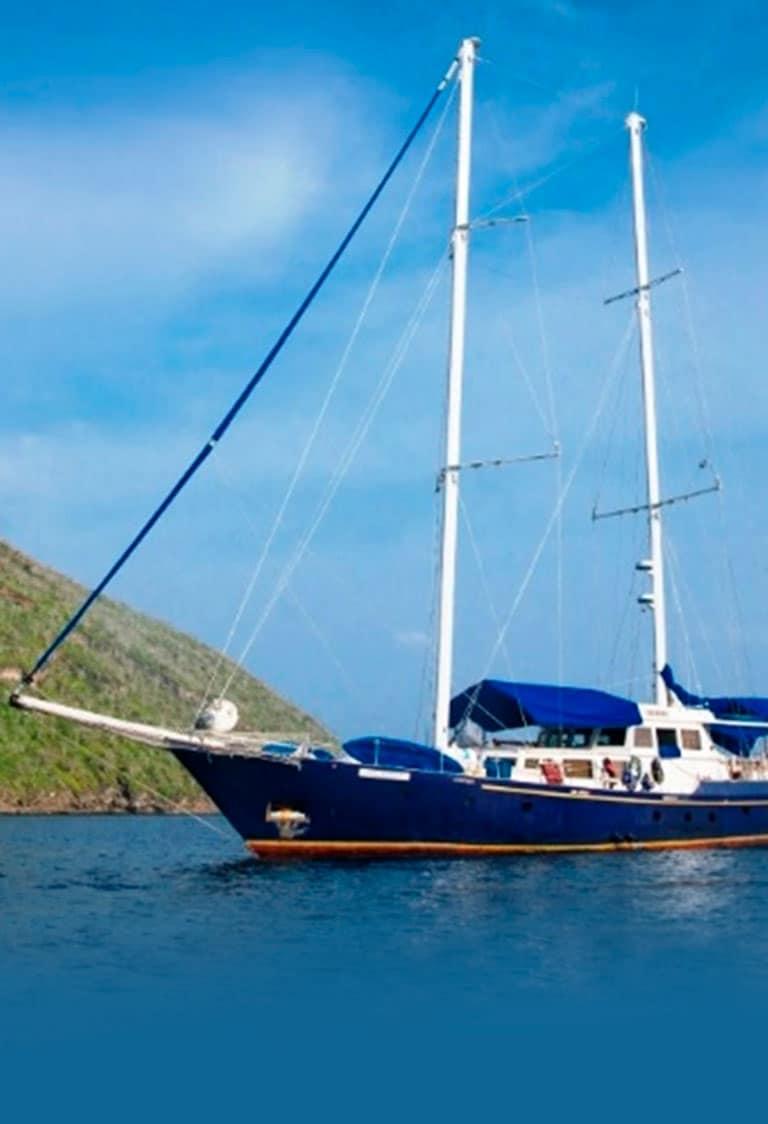 Beagle Yacht