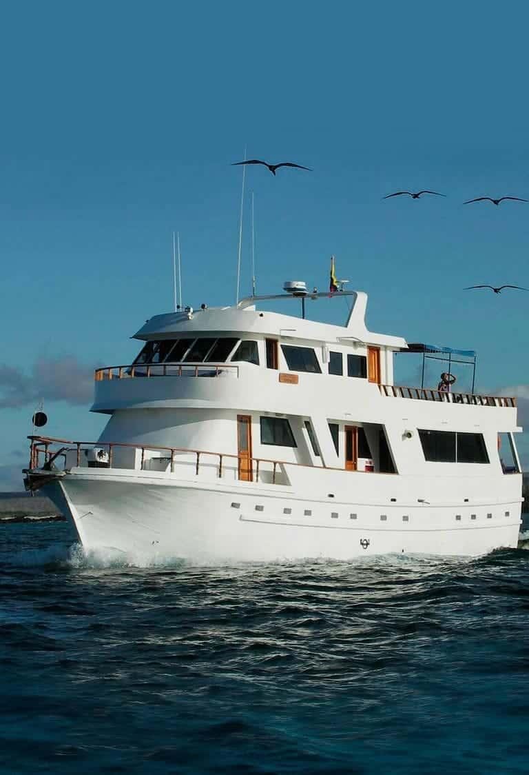 Darwin Yacht
