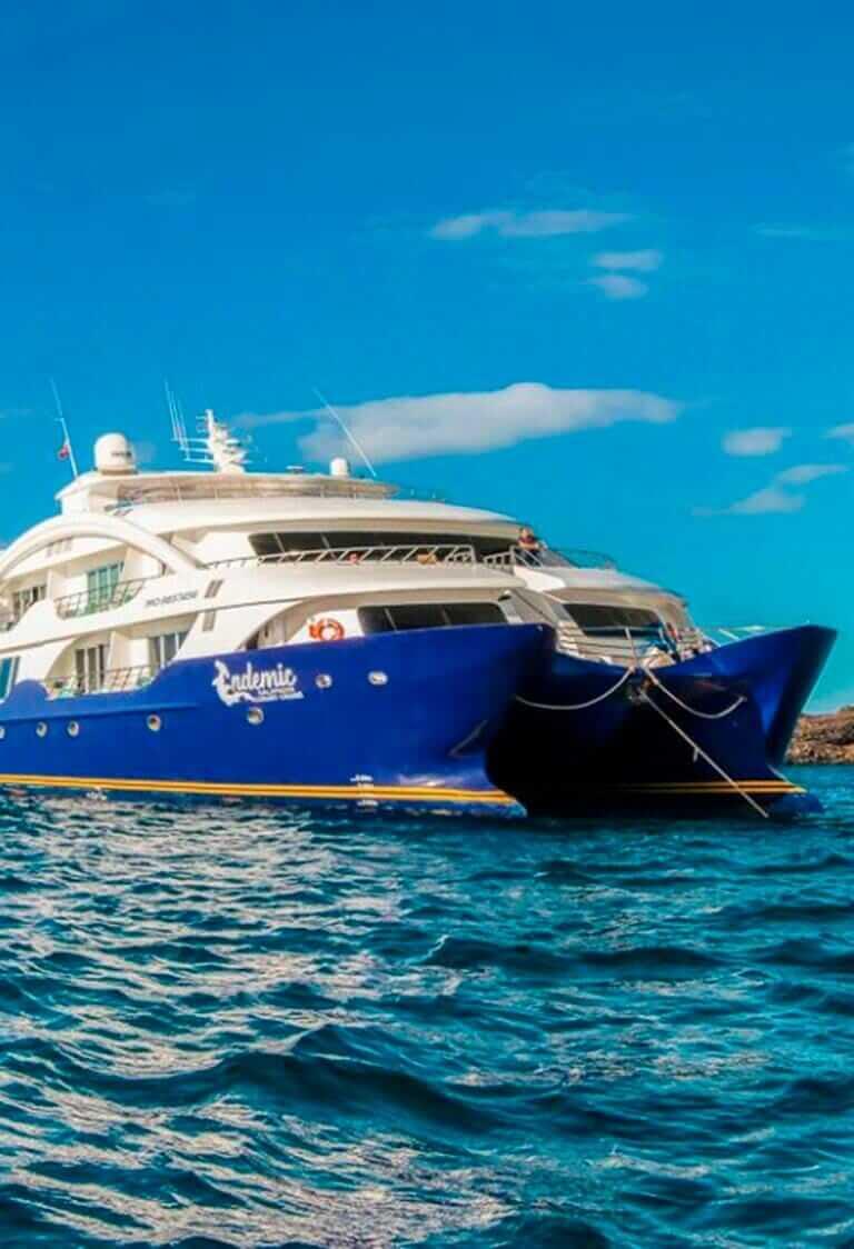 Endemic Catamaran