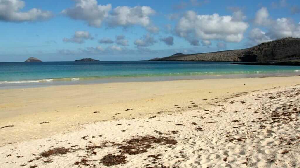 golden sand beach of floreana island galapagos