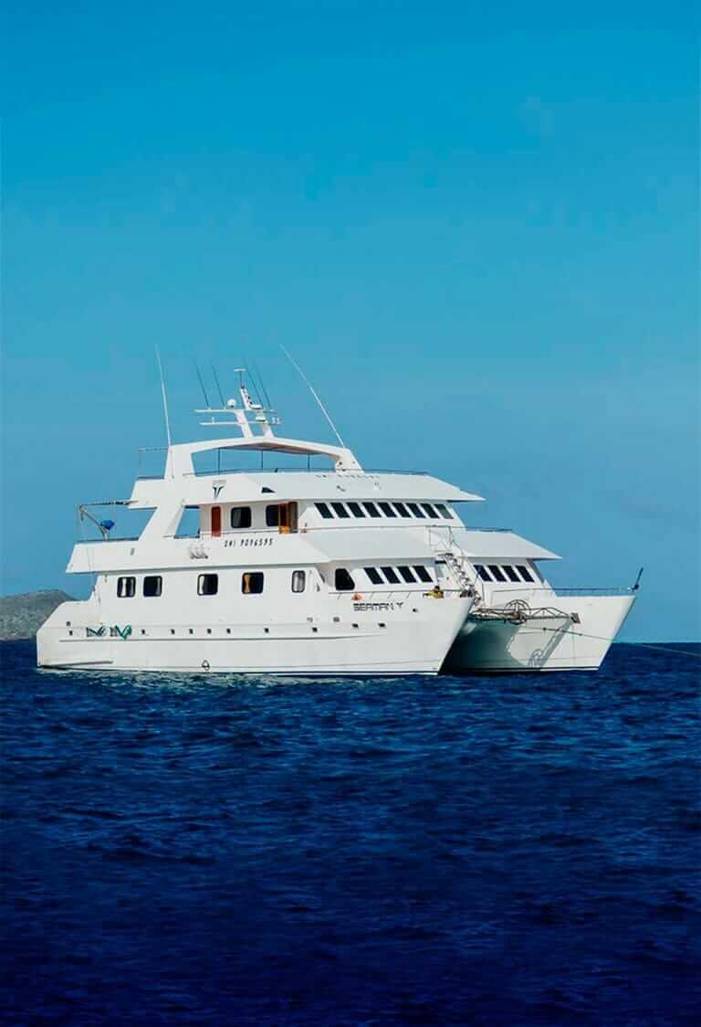 Seaman Journey Catamaran