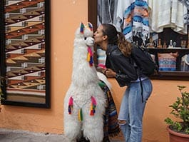 fun tourist kissing a toy llama in quito ecuador
