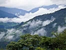 landscape panorama of ecuador cloud forest