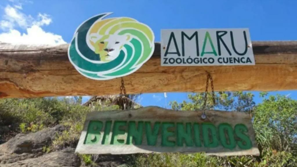 things to do in cuenca ecuador - visit amaru biopark zoo