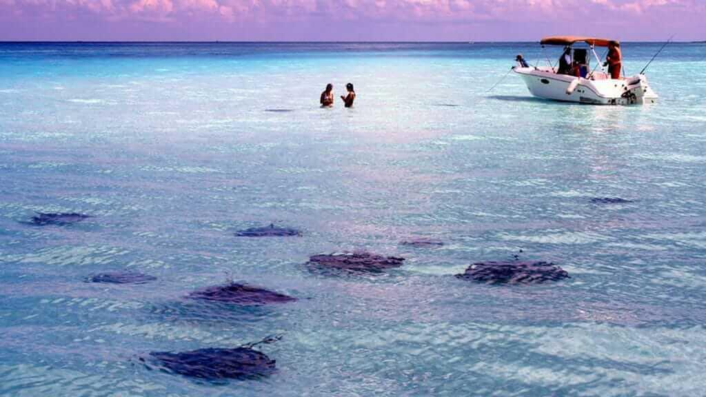 cayman islands snorkeling tour