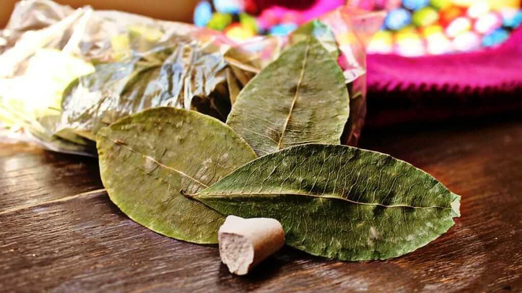 coca leaf tea is a natural remedy for altitude sickness in ecuador