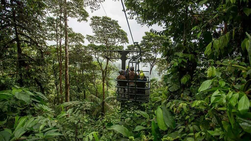 dragonfly forest zipline at mashpi ecuador