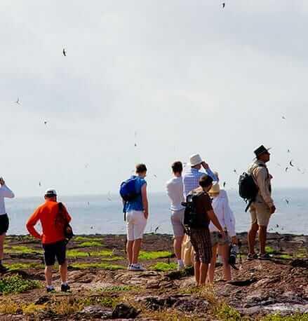 tourists-admiring-birds-at-the-galapagos-islands-archipelago in Ecuador