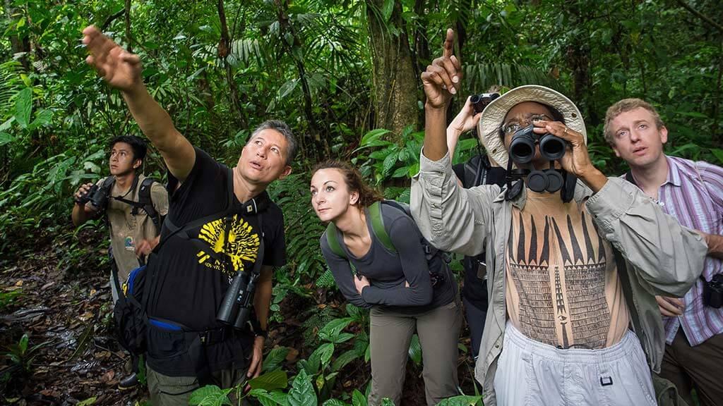 tourists in the ecuadorian amazon jungle spotting wildlife in trees with binoculars