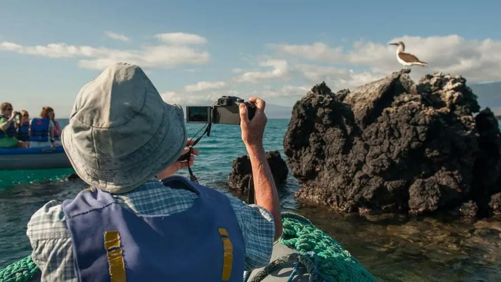 tourists-taking-a-photo-of-a-blue-footed-booby-in-galapagos-islands