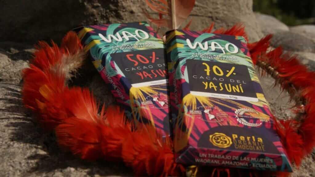 wao rainforest chocolate in ecuador