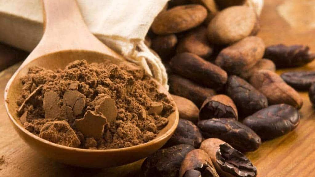 food-chocolate-ecuador-travel-destination