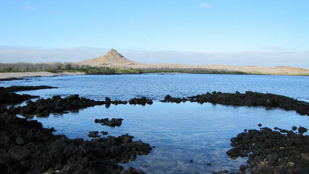 dragon hill cerro brujo galapagos visitor site santa-cruz island