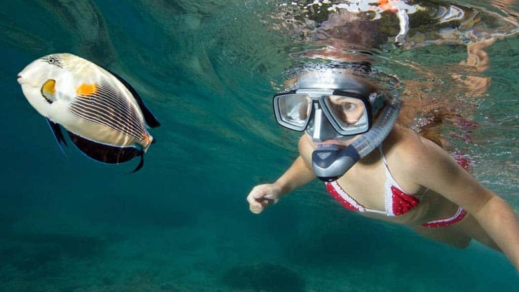 girl-snorkeling-with-fish in the galapagos islands ecuador