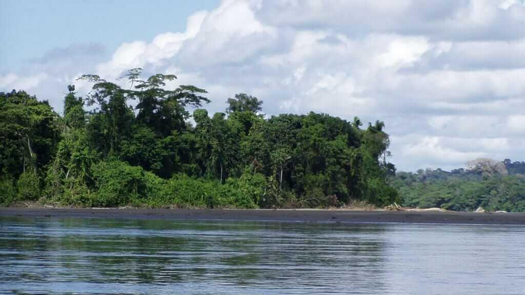 napo-river-ecuador-landscape amazon jungle