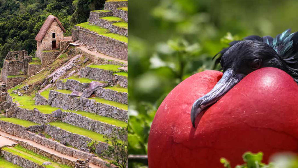 peru-and-galapagos-land-tour