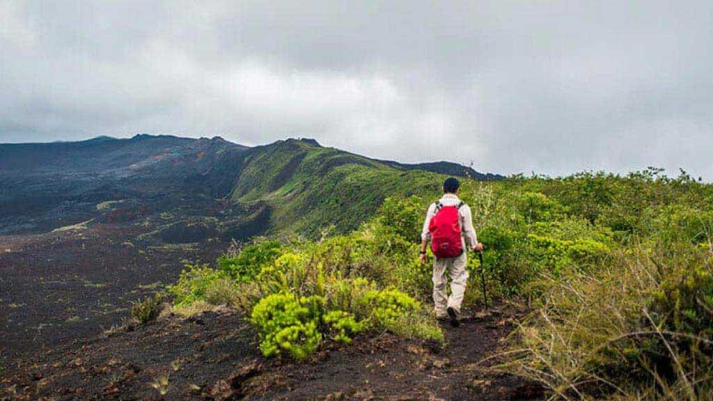 A tourist walks the rim of sierra negra volcano caldera on isabela island at galapagos