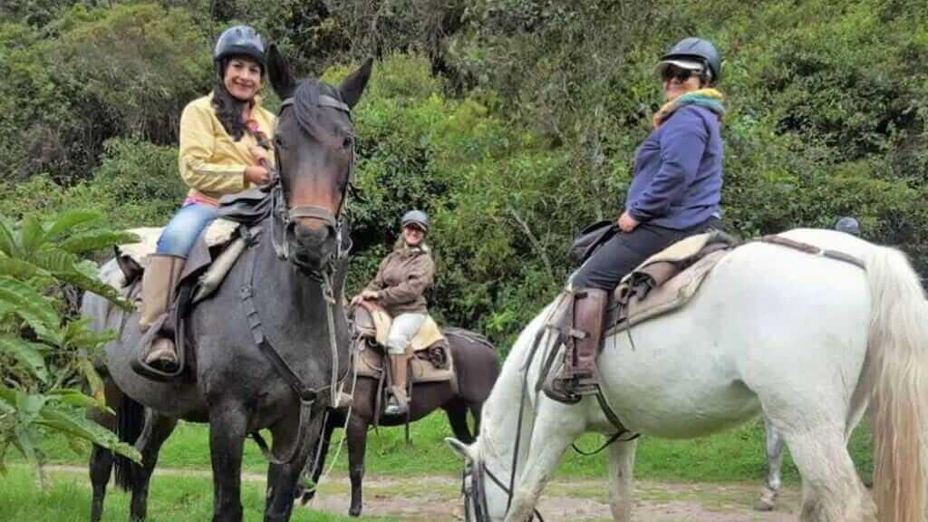 hacienda zuleta horseriding